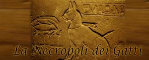 La Necropoli dei Gatti